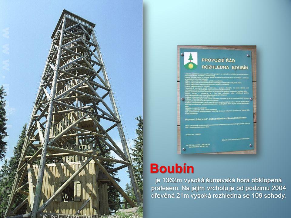 Boubín je 1362m vysoká šumavská hora obklopená pralesem.