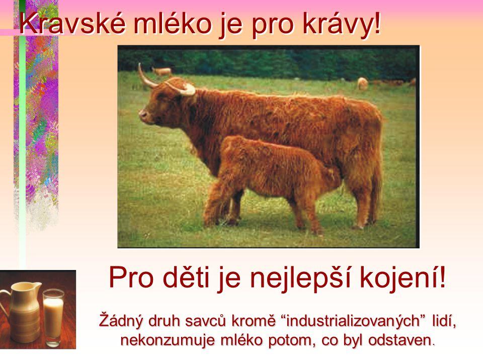 """Kravské mléko je pro krávy! Žádný druh savců kromě """"industrializovaných"""" lidí, nekonzumuje mléko potom, co byl odstaven. Pro děti je nejlepší kojení!"""