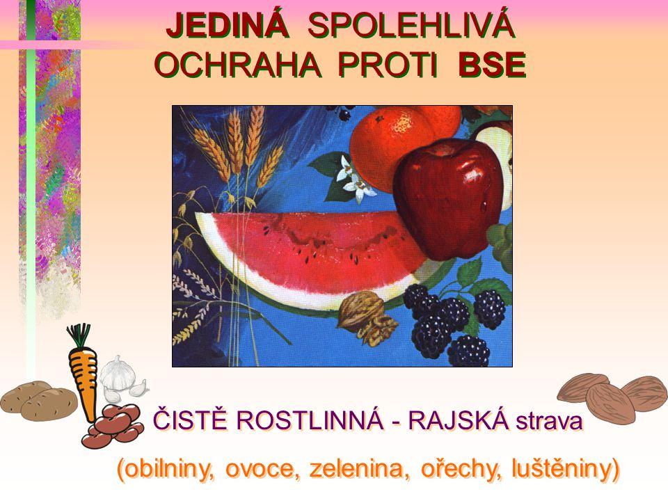 JEDINÁ SPOLEHLIVÁ OCHRAHA PROTI BSE ČISTĚ ROSTLINNÁ - RAJSKÁ strava (obilniny, ovoce, zelenina, ořechy, luštěniny) ČISTĚ ROSTLINNÁ - RAJSKÁ strava (ob