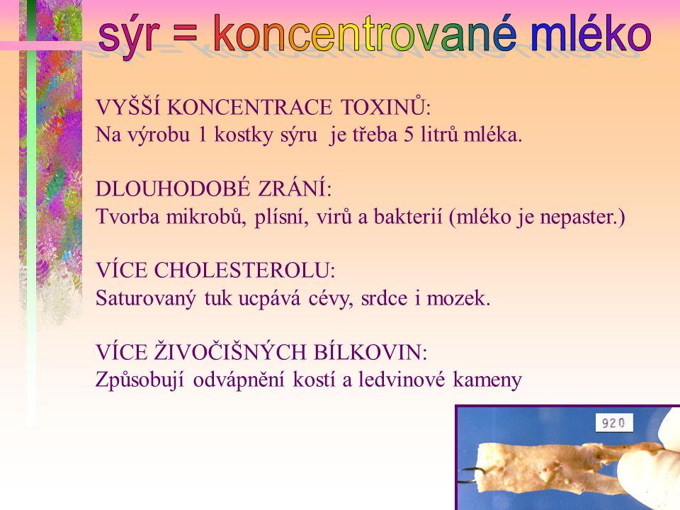 VYŠŠÍ KONCENTRACE TOXINŮ: Na výrobu 1 kostky sýru je třeba 5 litrů mléka. DLOUHODOBÉ ZRÁNÍ: Tvorba mikrobů, plísní, virů a bakterií (mléko je nepaster