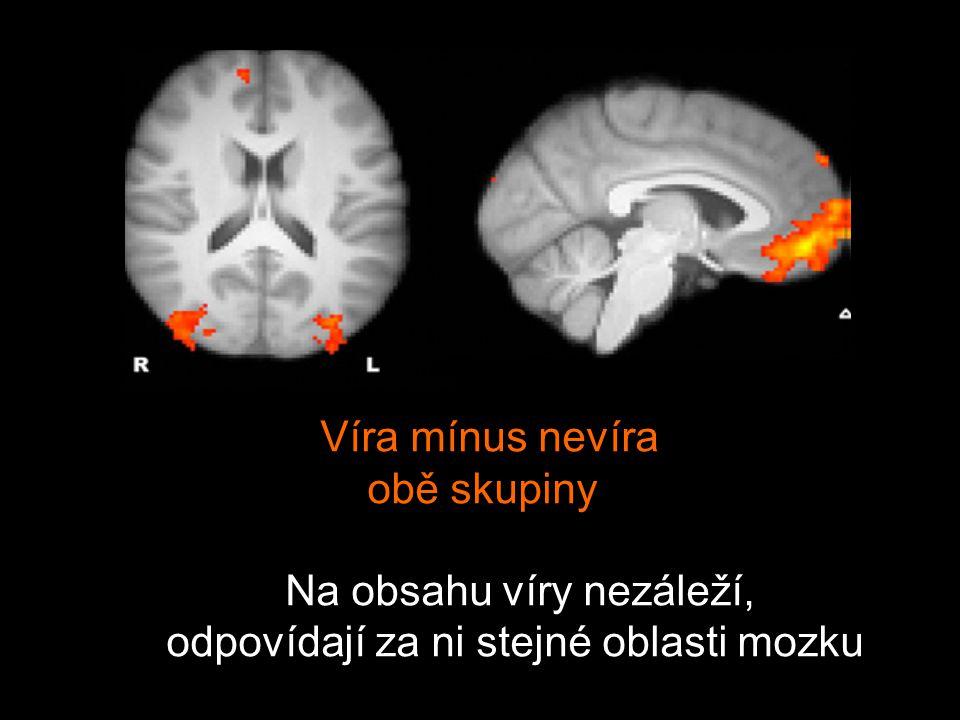 Víra mínus nevíra obě skupiny Na obsahu víry nezáleží, odpovídají za ni stejné oblasti mozku