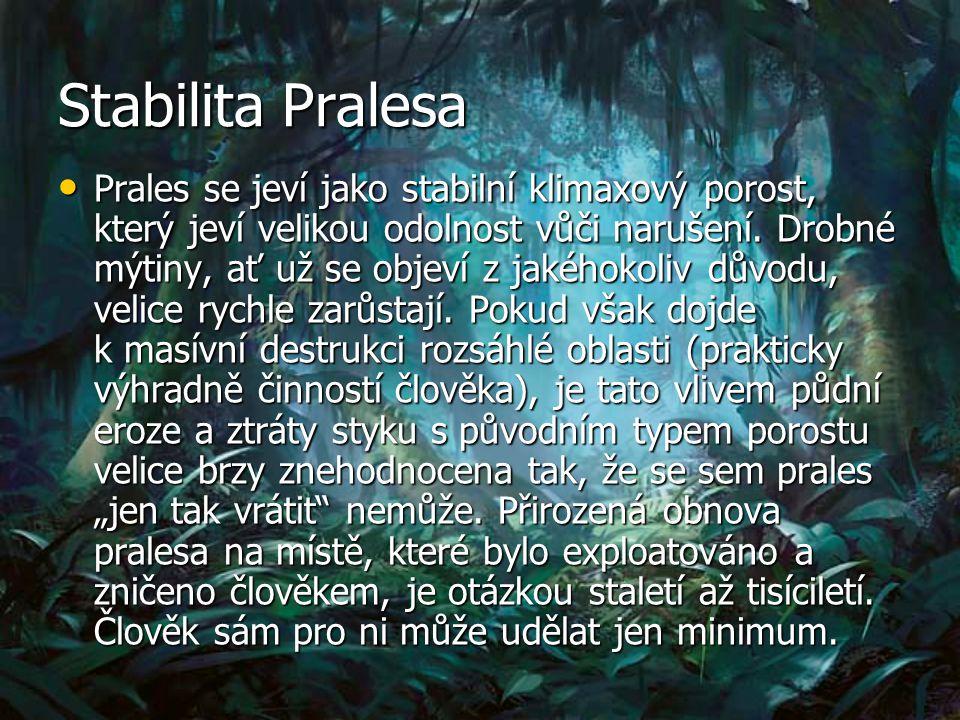 Stabilita Pralesa Prales se jeví jako stabilní klimaxový porost, který jeví velikou odolnost vůči narušení.