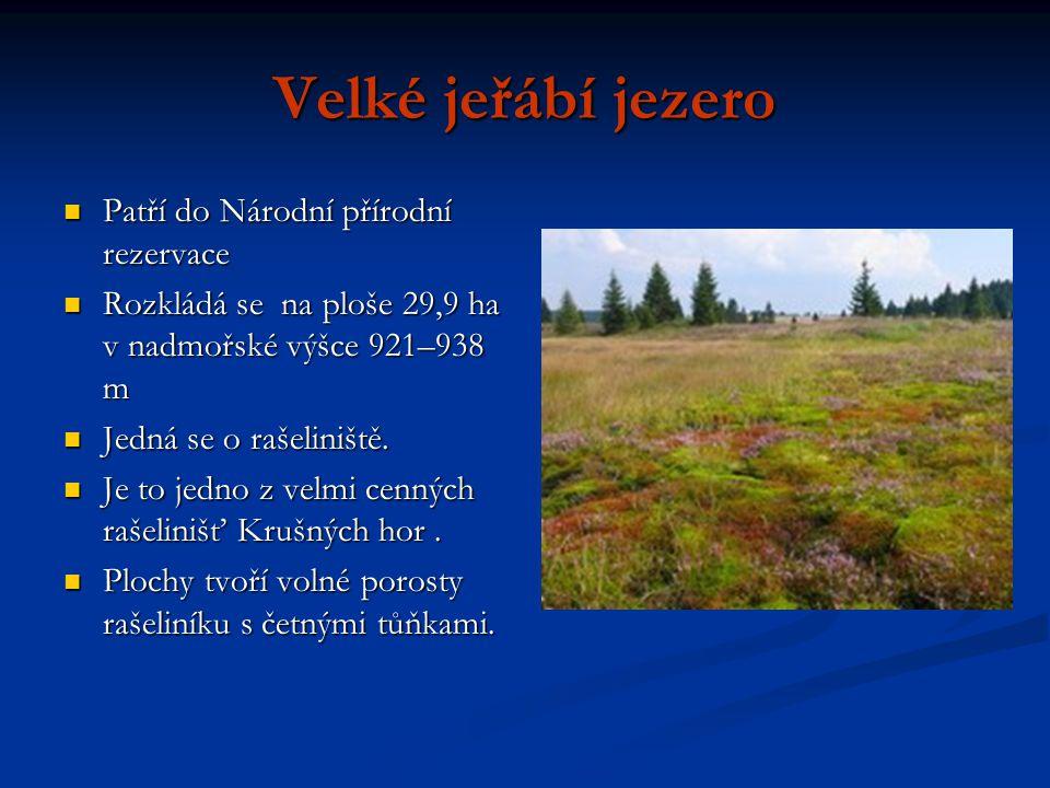 Velké jeřábí jezero Patří do Národní přírodní rezervace Patří do Národní přírodní rezervace Rozkládá se na ploše 29,9 ha v nadmořské výšce 921–938 m Rozkládá se na ploše 29,9 ha v nadmořské výšce 921–938 m Jedná se o rašeliniště.