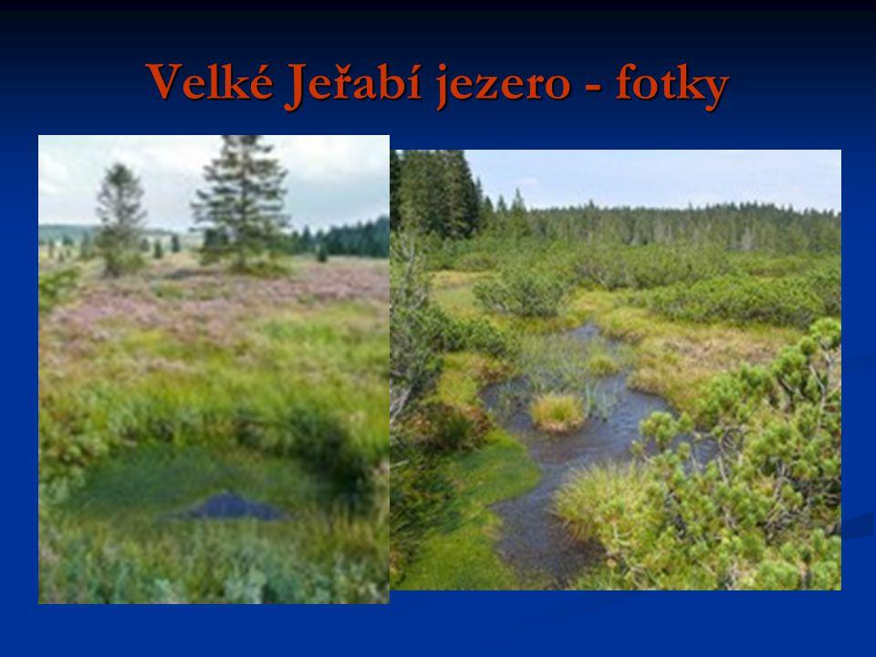 Velké Jeřabí jezero - fotky
