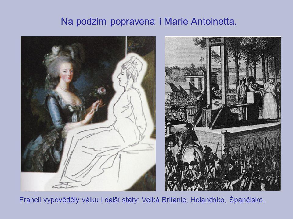 Na podzim popravena i Marie Antoinetta. Francii vypověděly válku i další státy: Velká Británie, Holandsko, Španělsko.