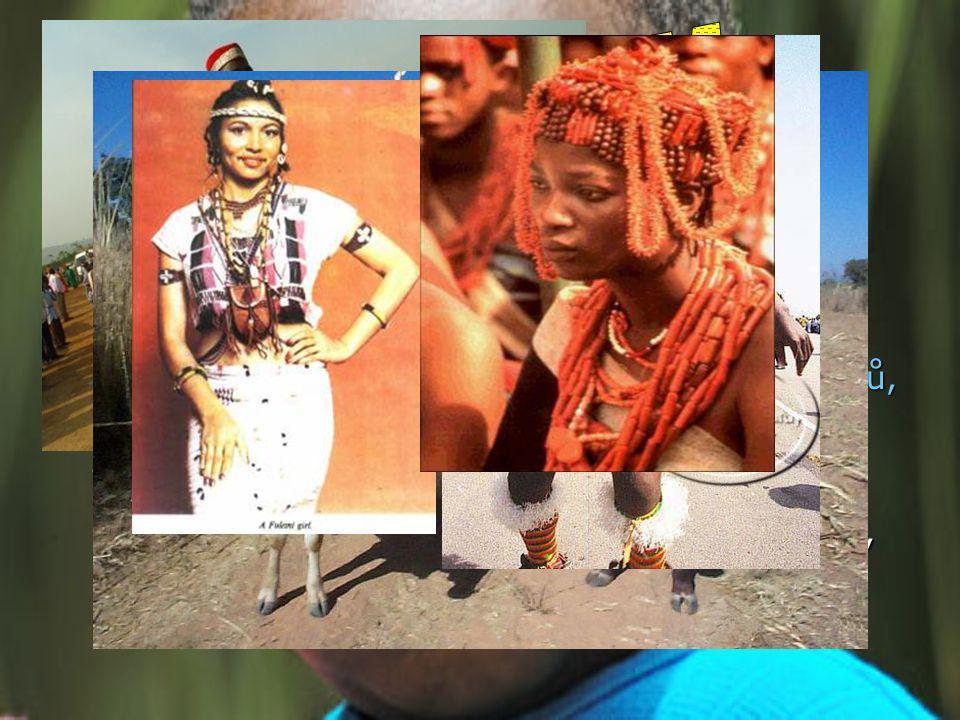 V Nigérii žije více než 250 etnických skupin V Nigérii žije více než 250 etnických skupin Hlavní: Hausa, Yoruba, Igbo (Ibo) a Fulani Hlavní: Hausa, Yoruba, Igbo (Ibo) a Fulani Další: Ijaw, Kanuri, Ibibio, a Tiv Další: Ijaw, Kanuri, Ibibio, a Tiv Žijí zde také malé komunity Afrikánců, Angličanů, Američanů, Číňanů, Indů, Japonců, Libanonců a jiných, zejména evropských národů.