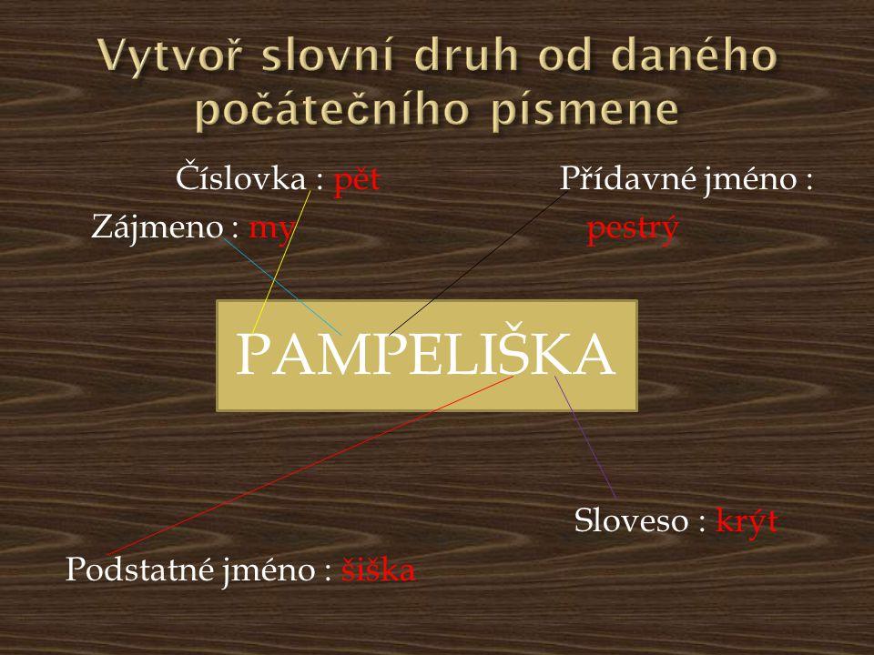 Číslovka : pět Přídavné jméno : Zájmeno : my pestrý Sloveso : krýt Podstatné jméno : šiška PAMPELIŠKA