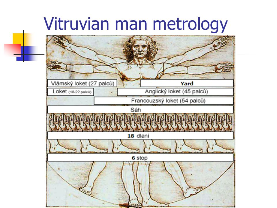Vitruvian man metrology