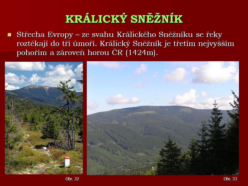 Střecha Evropy – ze svahu Králického Sněžníku se řeky roztékají do tří úmoří. Králický Sněžník je třetím nejvyšším pohořím a zároveň horou ČR (1424m).