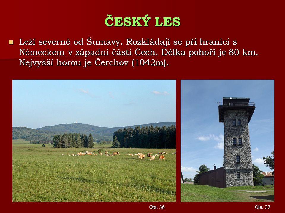 Leží severně od Šumavy. Rozkládají se při hranici s Německem v západní části Čech. Délka pohoří je 80 km. Nejvyšší horou je Čerchov (1042m). Leží seve