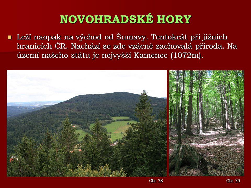 Leží naopak na východ od Šumavy. Tentokrát při jižních hranicích ČR. Nachází se zde vzácně zachovalá příroda. Na území našeho státu je nejvyšší Kamene