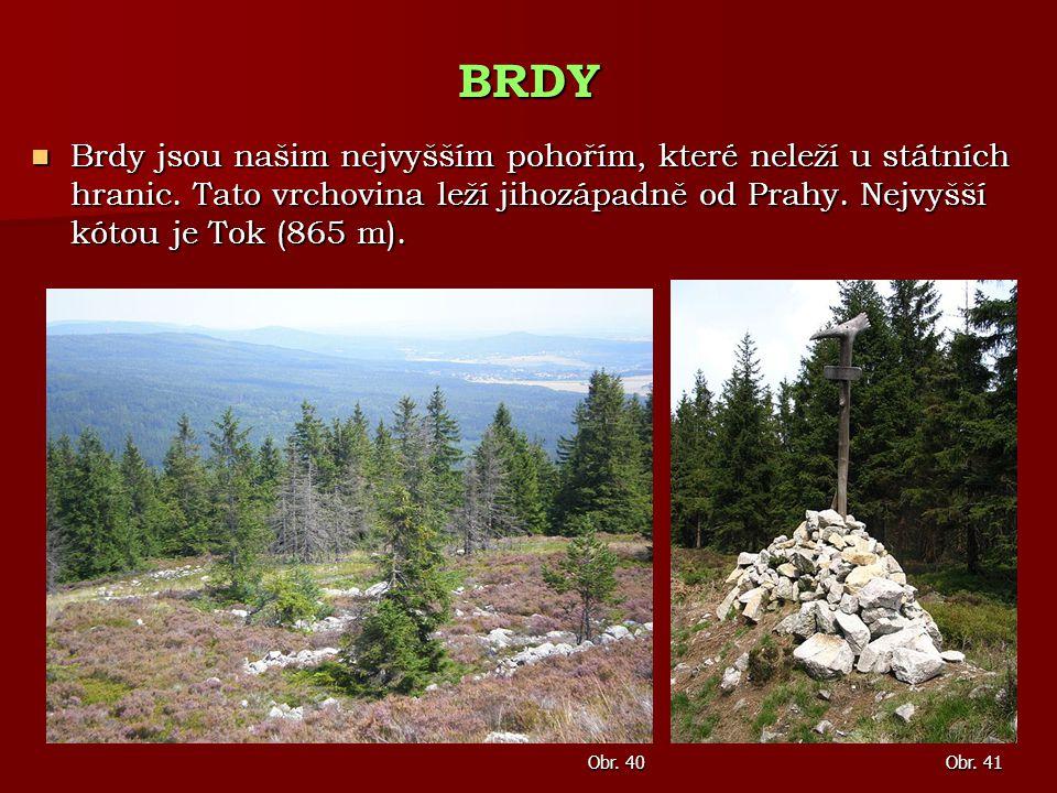 Brdy jsou našim nejvyšším pohořím, které neleží u státních hranic. Tato vrchovina leží jihozápadně od Prahy. Nejvyšší kótou je Tok (865 m). Brdy jsou