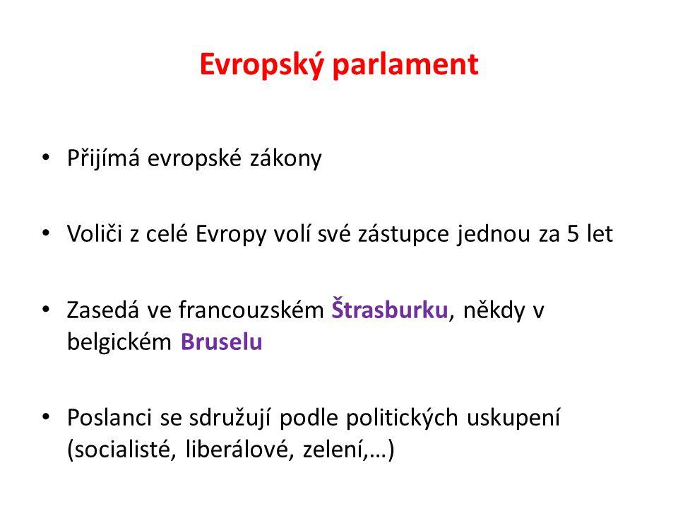 Evropský parlament Přijímá evropské zákony Voliči z celé Evropy volí své zástupce jednou za 5 let Zasedá ve francouzském Štrasburku, někdy v belgickém Bruselu Poslanci se sdružují podle politických uskupení (socialisté, liberálové, zelení,…)