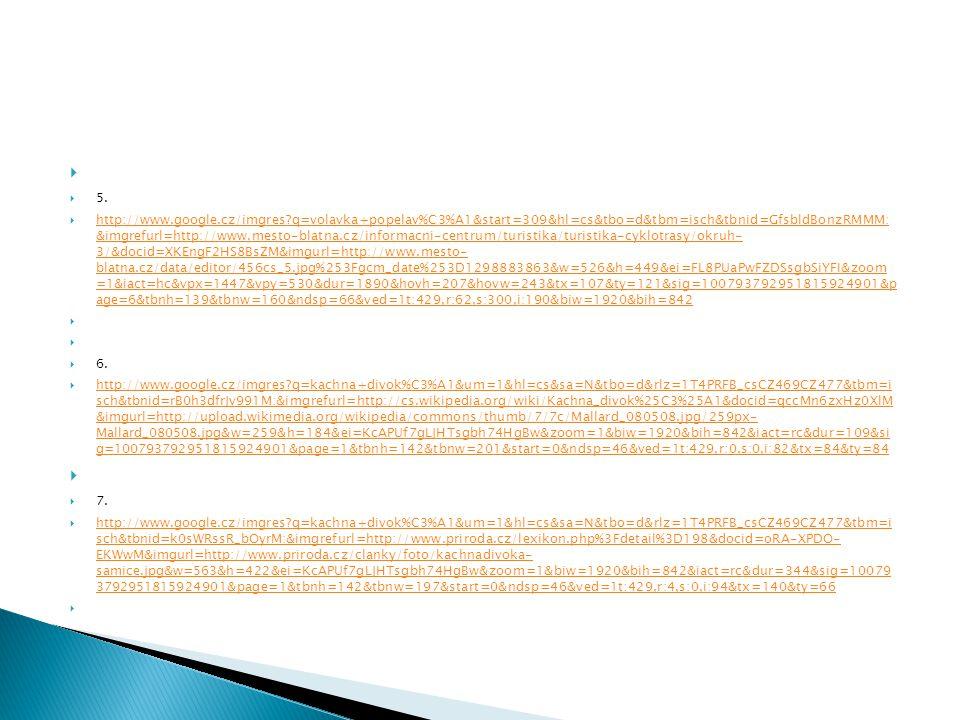  5.  http://www.google.cz/imgres?q=volavka+popelav%C3%A1&start=309&hl=cs&tbo=d&tbm=isch&tbnid=GfsbldBonzRMMM: &imgrefurl=http://www.mesto-blatna.cz/