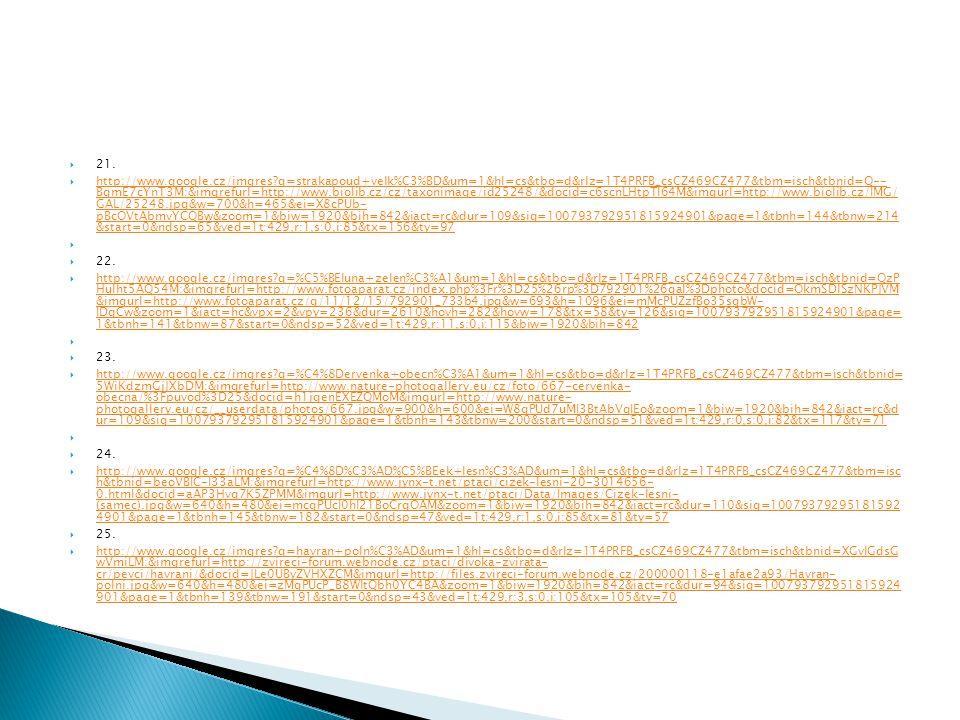  21.  http://www.google.cz/imgres?q=strakapoud+velk%C3%BD&um=1&hl=cs&tbo=d&rlz=1T4PRFB_csCZ469CZ477&tbm=isch&tbnid=Q-- BgmE7cYnT3M:&imgrefurl=http:/
