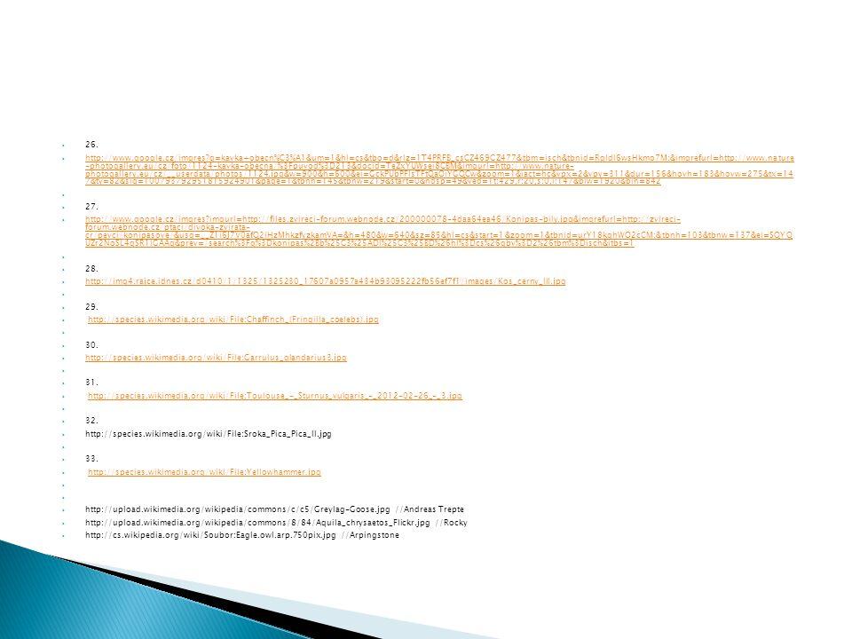  26.  http://www.google.cz/imgres?q=kavka+obecn%C3%A1&um=1&hl=cs&tbo=d&rlz=1T4PRFB_csCZ469CZ477&tbm=isch&tbnid=RqldI6wsHkmo7M:&imgrefurl=http://www.
