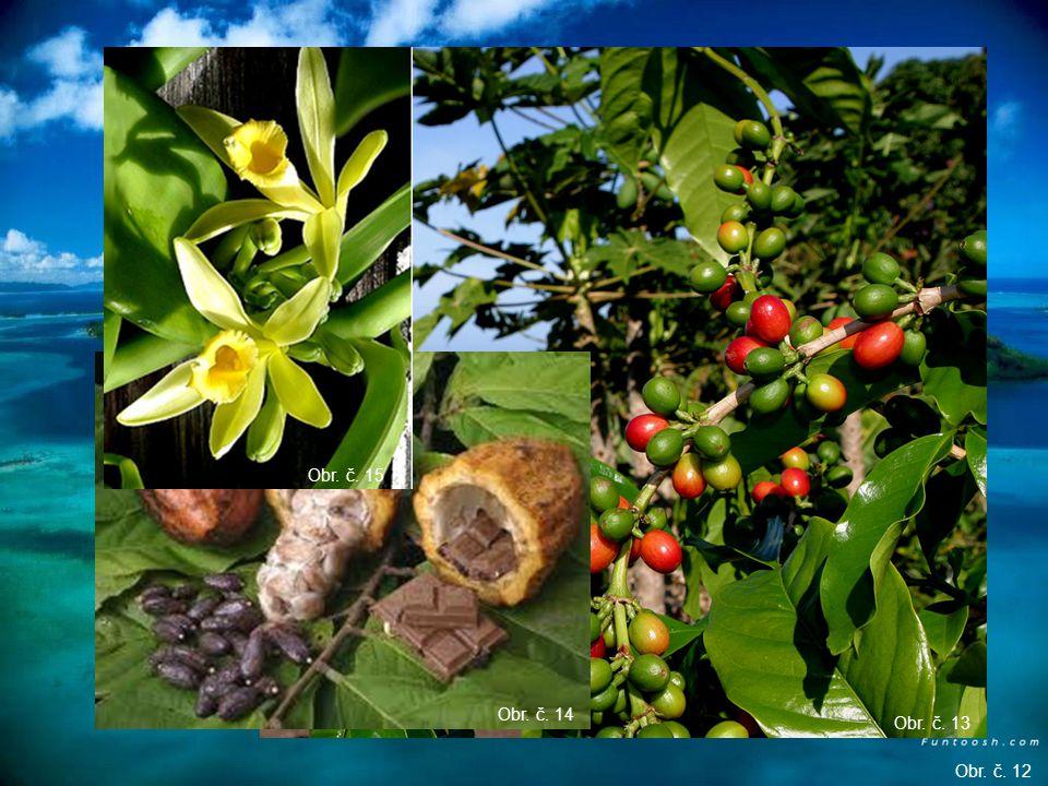 Madagaskar – pěstování koření (vanilka, hřebíček, kávovník, kakaovník) Obr. č. 11 Obr. č. 12 Obr. č. 13 Obr. č. 14 Obr. č. 15