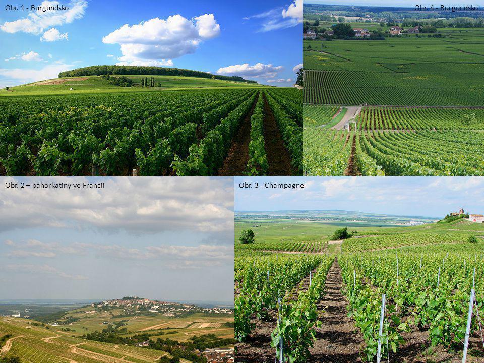 Obr. 1 - Burgundsko Obr. 2 – pahorkatiny ve FranciiObr. 3 - Champagne Obr. 4 - Burgundsko