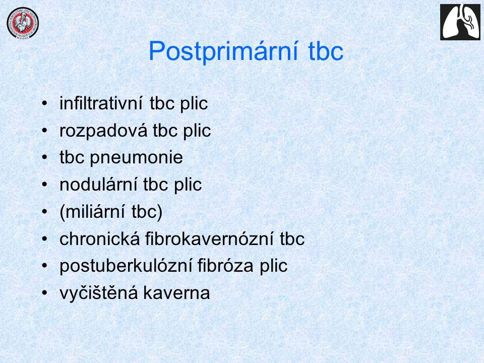 Postprimární tbc infiltrativní tbc plic rozpadová tbc plic tbc pneumonie nodulární tbc plic (miliární tbc) chronická fibrokavernózní tbc postuberkulóz