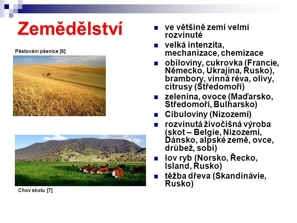 Zemědělství ve většině zemí velmi rozvinuté velká intenzita, mechanizace, chemizace obiloviny, cukrovka (Francie, Německo, Ukrajina, Rusko), brambory,