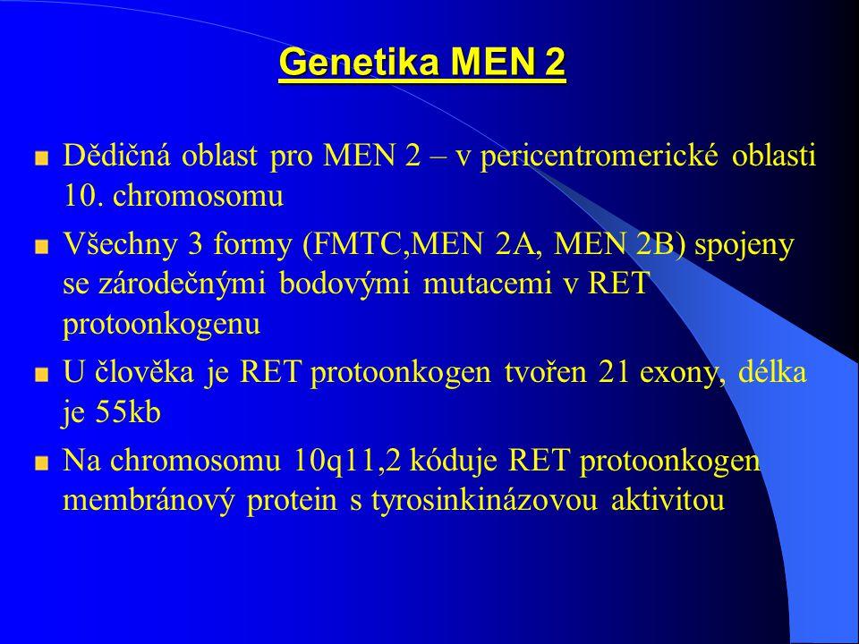 Genetika MEN 2 Dědičná oblast pro MEN 2 – v pericentromerické oblasti 10.