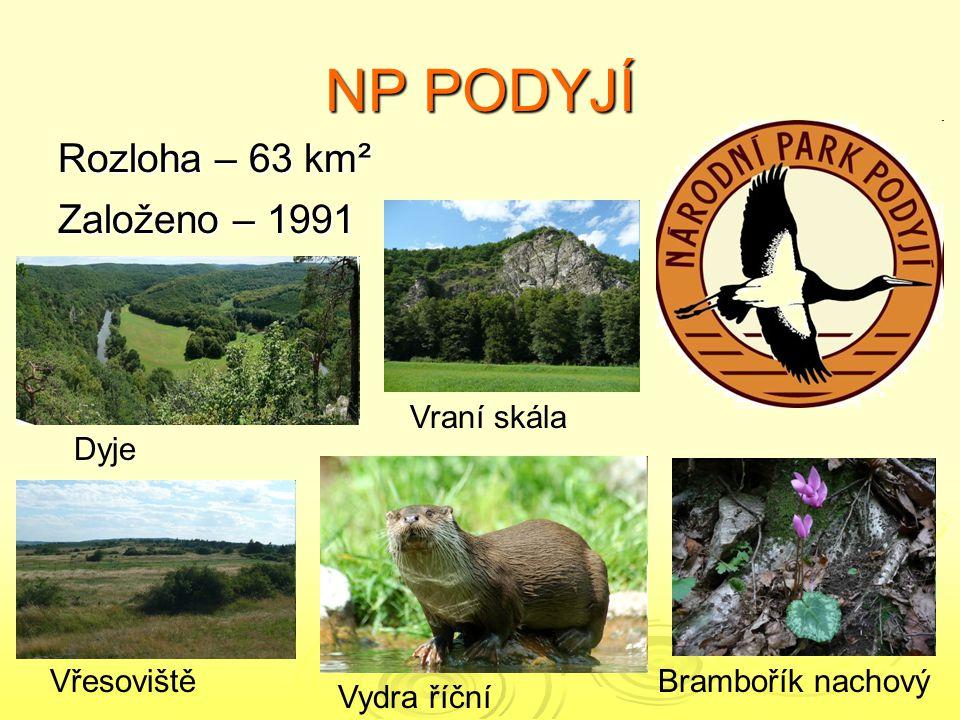 NP ČESKÉ ŠVÝCARSKO Rozloha – 80 km² Založeno - 1999 Sokol stěhovavýViolka dvoukvětá Pravčická brána Kamenice