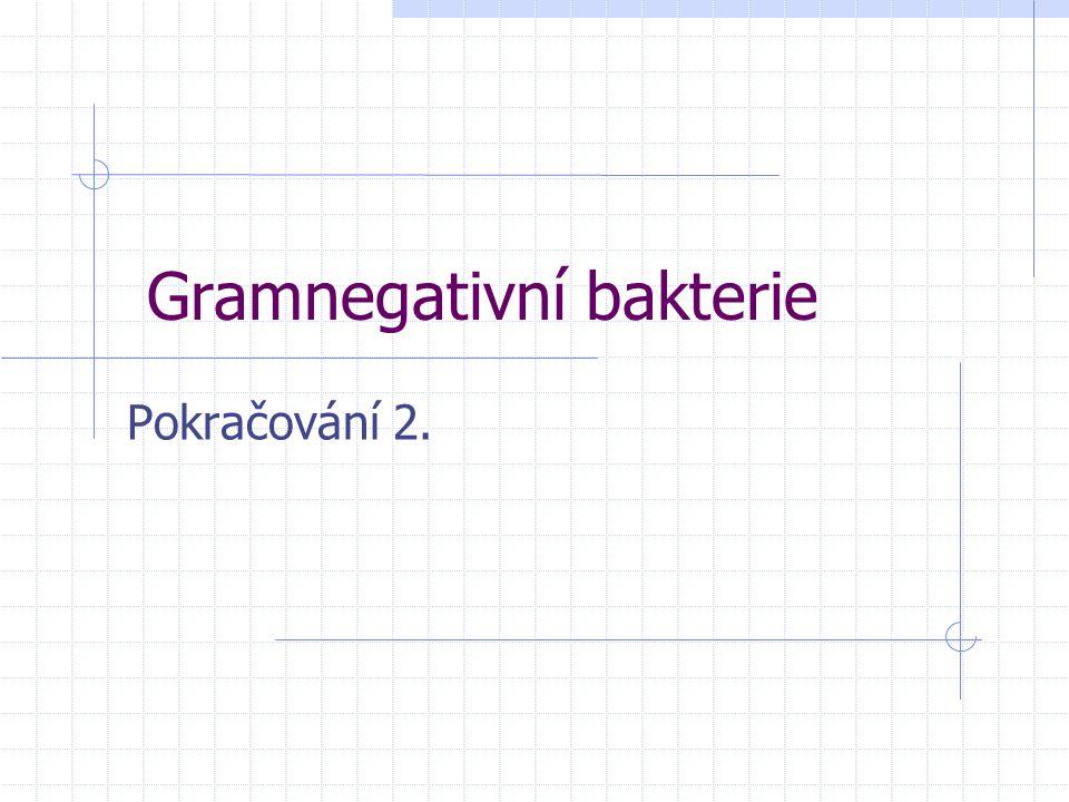 Gramnegativní bakterie Pokračování 2.