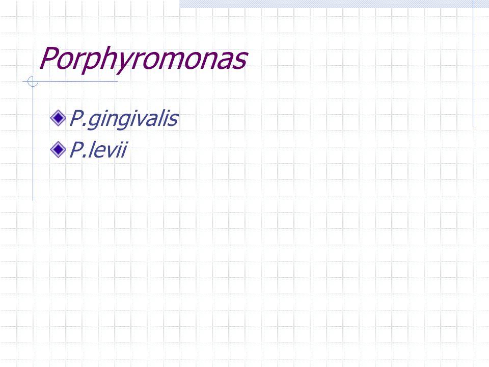Porphyromonas P.gingivalis P.levii