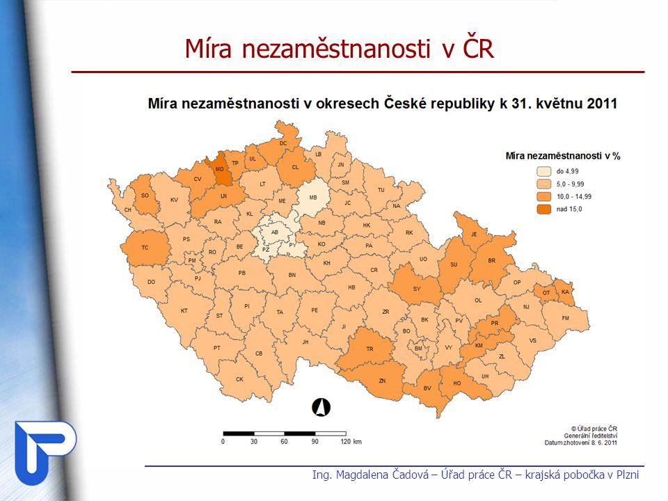 Míra nezaměstnanosti v ČR Ing. Magdalena Čadová – Úřad práce ČR – krajská pobočka v Plzni