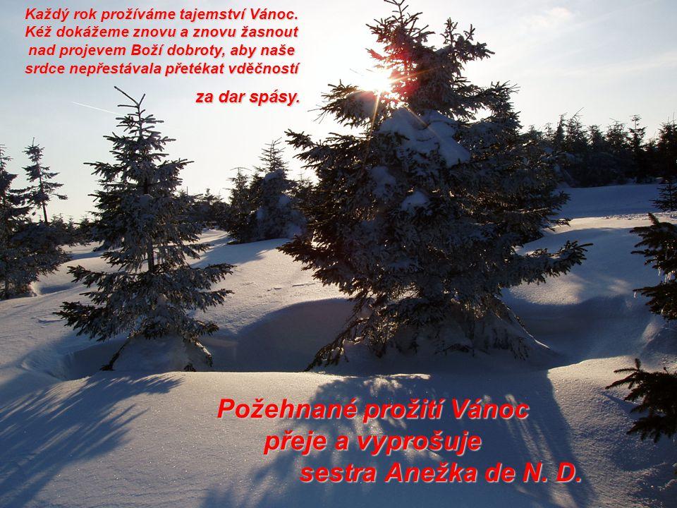 Požehnané prožití Vánoc přeje a vyprošuje sestra Anežka de N. D. Každý rok prožíváme tajemství Vánoc. Kéž dokážeme znovu a znovu žasnout nad projevem