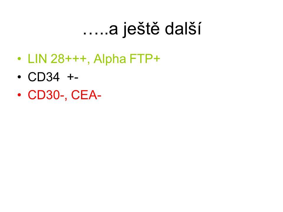 …..a ještě další LIN 28+++, Alpha FTP+ CD34 +- CD30-, CEA-