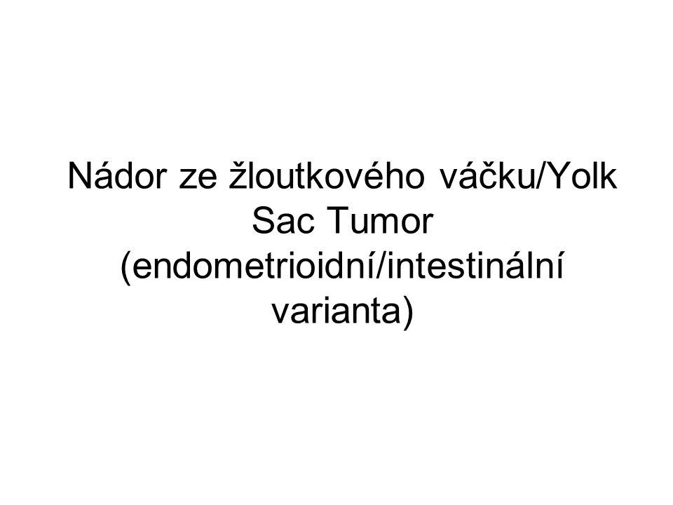 Nádor ze žloutkového váčku/Yolk Sac Tumor (endometrioidní/intestinální varianta)