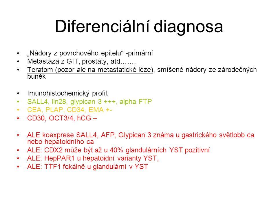"""Diferenciální diagnosa """"Nádory z povrchového epitelu"""" -primární Metastáza z GIT, prostaty, atd……. Teratom (pozor ale na metastatické léze), smíšené ná"""