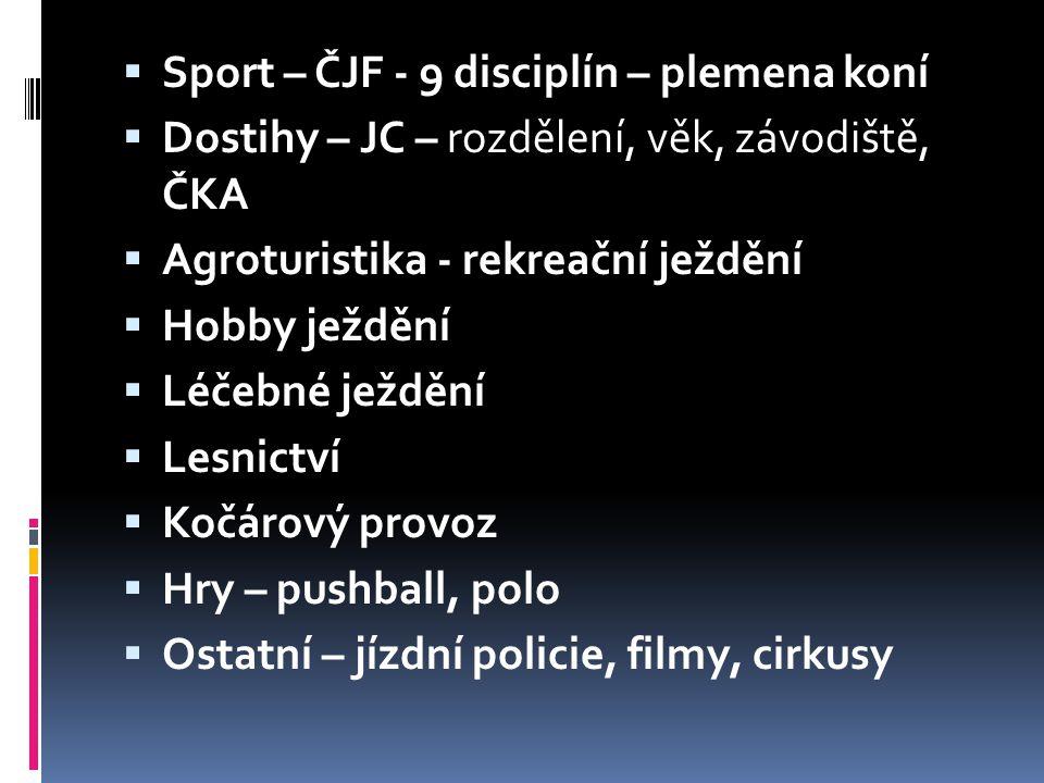  Sport – ČJF - 9 disciplín – plemena koní  Dostihy – JC – rozdělení, věk, závodiště, ČKA  Agroturistika - rekreační ježdění  Hobby ježdění  Léčeb