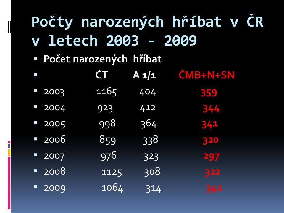 Počty narozených hříbat v ČR v letech 2003 - 2009  Počet narozených hříbat  ČT A 1/1 ČMB+N+SN  2003 1165 404 359  2004 923 412 344  2005 998 364