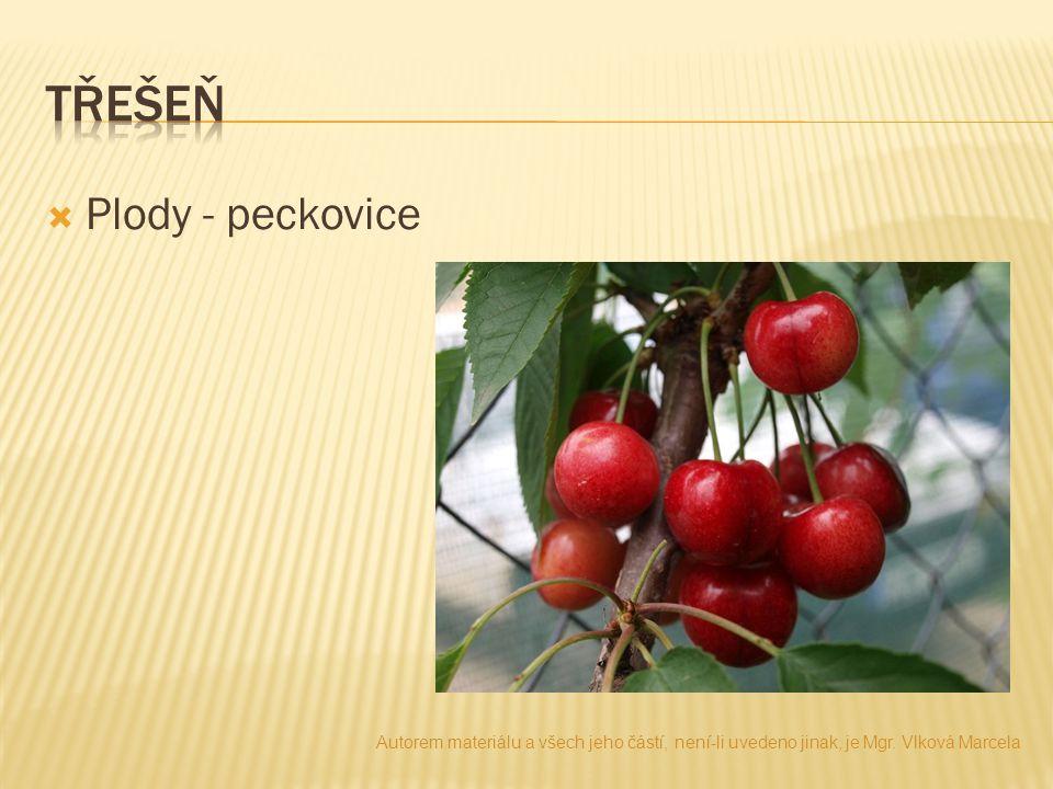  Plody - peckovice Autorem materiálu a všech jeho částí, není-li uvedeno jinak, je Mgr. Vlková Marcela