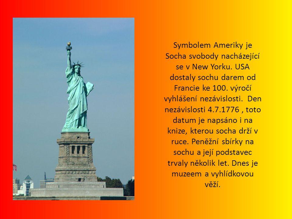 Symbolem Ameriky je Socha svobody nacházející se v New Yorku. USA dostaly sochu darem od Francie ke 100. výročí vyhlášení nezávislosti. Den nezávislos