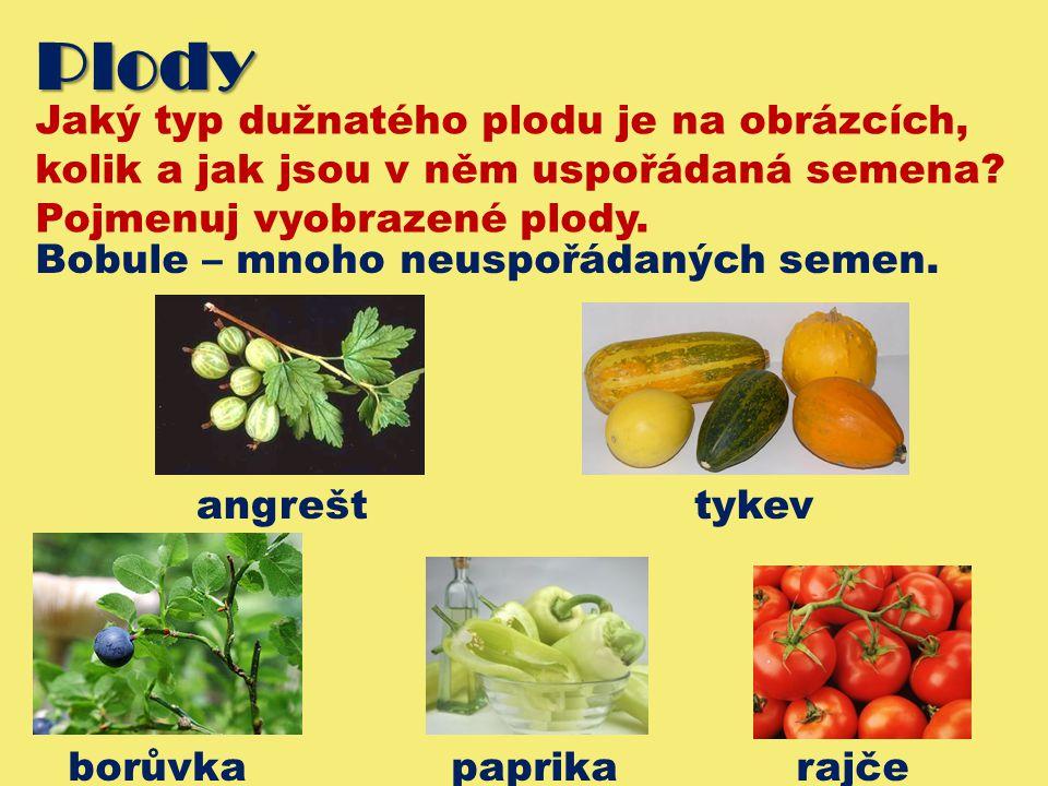 Plody Jaký typ dužnatého plodu je na obrázcích, kolik a jak jsou v něm uspořádaná semena? Pojmenuj vyobrazené plody. Bobule – mnoho neuspořádaných sem