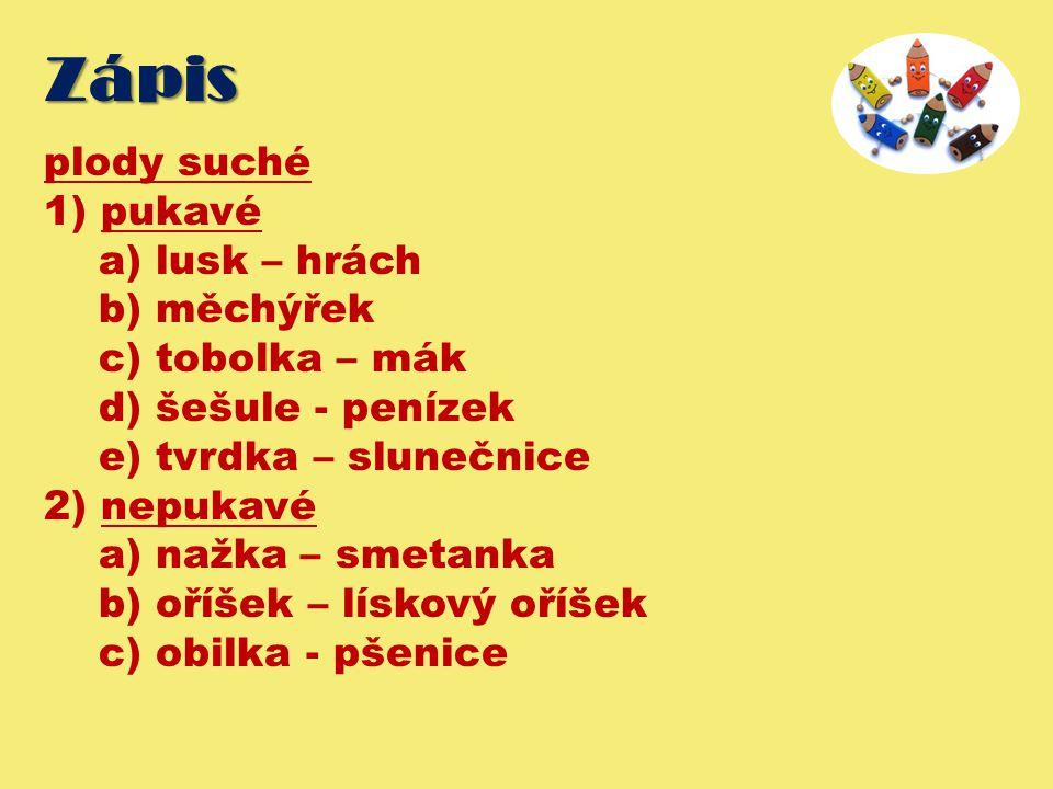 Zápis plody suché 1) pukavé a) lusk – hrách b) měchýřek c) tobolka – mák d) šešule - penízek e) tvrdka – slunečnice 2) nepukavé a) nažka – smetanka b) oříšek – lískový oříšek c) obilka - pšenice