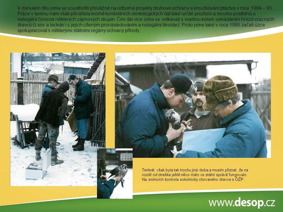 V minulém dílu jsme se soustředili převážně na odborné projekty druhové ochrany a kroužkování ptactva v roce 1994 – 95. Práce v terénu nám však přináš