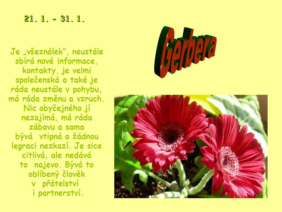 Překrásná, exotická květina, která zaujme na první pohled, takový je i člověk narozený v tomto znamení – originální a nevšední.