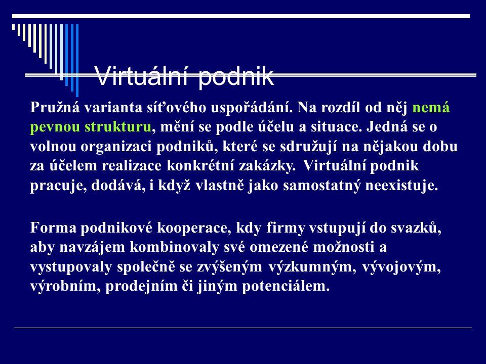 Virtuální podnik Pružná varianta síťového uspořádání. Na rozdíl od něj nemá pevnou strukturu, mění se podle účelu a situace. Jedná se o volnou organiz