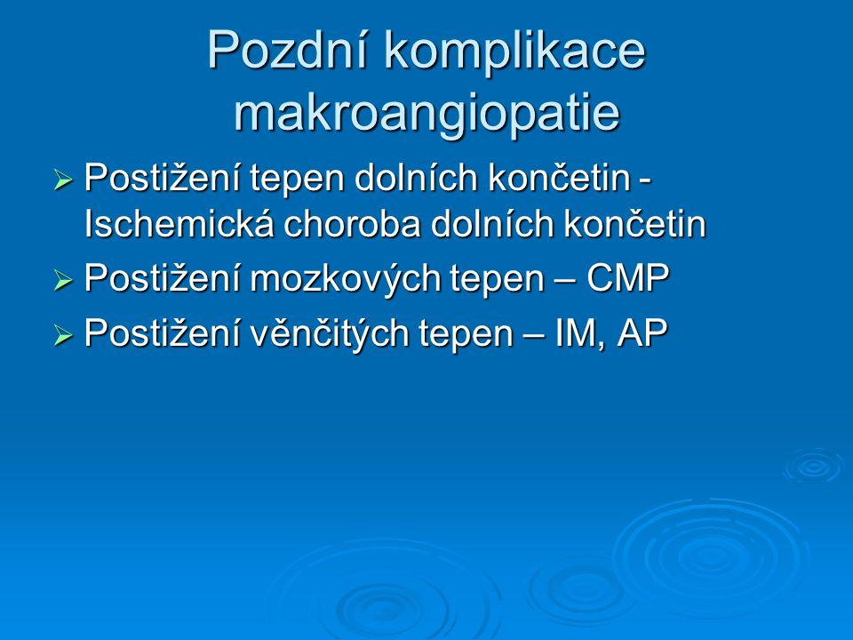 Pozdní komplikace makroangiopatie  Postižení tepen dolních končetin - Ischemická choroba dolních končetin  Postižení mozkových tepen – CMP  Postižení věnčitých tepen – IM, AP
