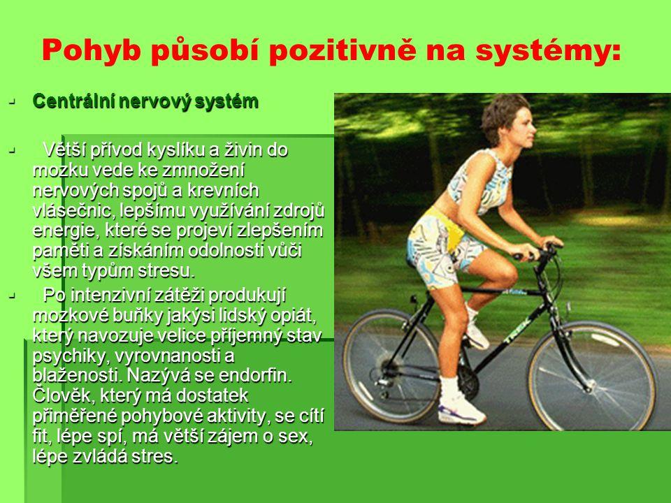 Pohyb působí pozitivně na systémy:  Centrální nervový systém  Větší přívod kyslíku a živin do mozku vede ke zmnožení nervových spojů a krevních vlásečnic, lepšímu využívání zdrojů energie, které se projeví zlepšením paměti a získáním odolnosti vůči všem typům stresu.