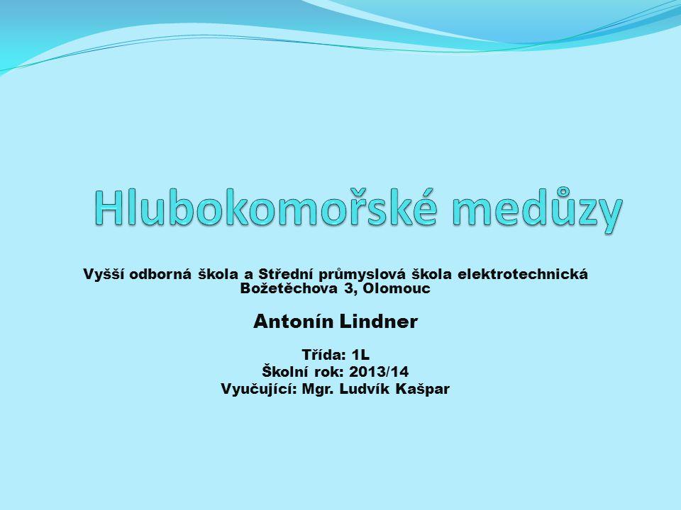 Vyšší odborná škola a Střední průmyslová škola elektrotechnická Božetěchova 3, Olomouc Antonín Lindner Třída: 1L Školní rok: 2013/14 Vyučující: Mgr. L