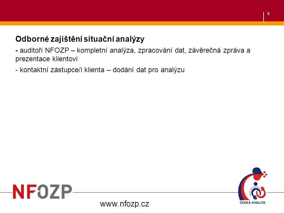 8 Odborné zajištění situační analýzy - auditoři NFOZP – kompletní analýza, zpracování dat, závěrečná zpráva a prezentace klientovi - kontaktní zástupc