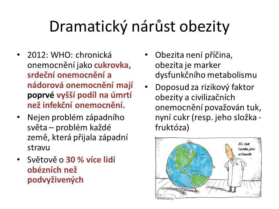 Dramatický nárůst obezity 2012: WHO: chronická onemocnění jako cukrovka, srdeční onemocnění a nádorová onemocnění mají poprvé vyšší podíl na úmrtí než infekční onemocnění.