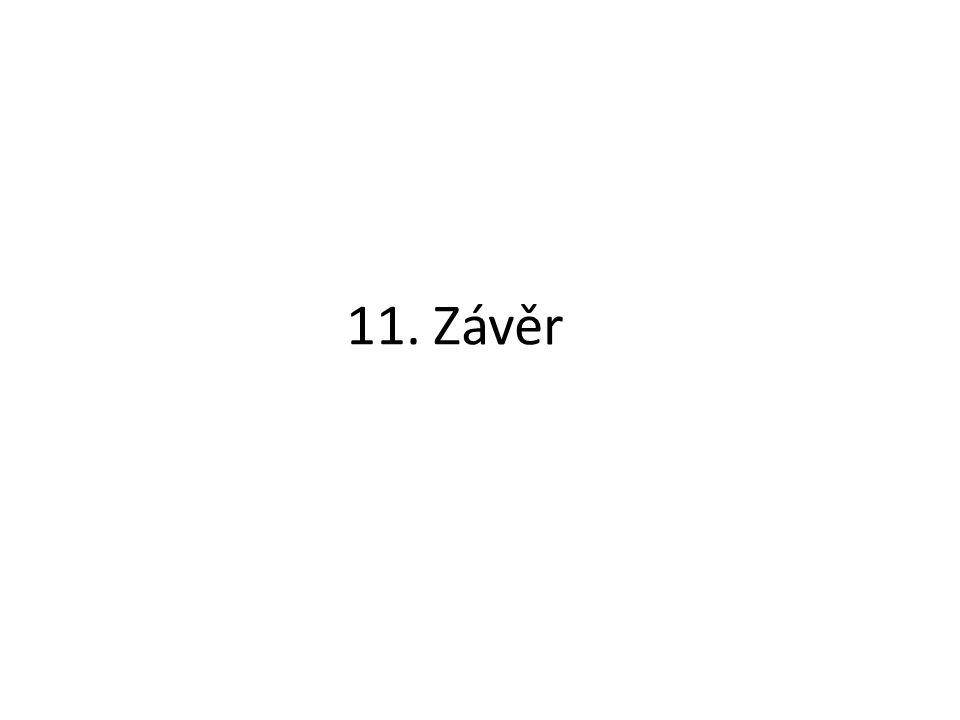 11. Závěr