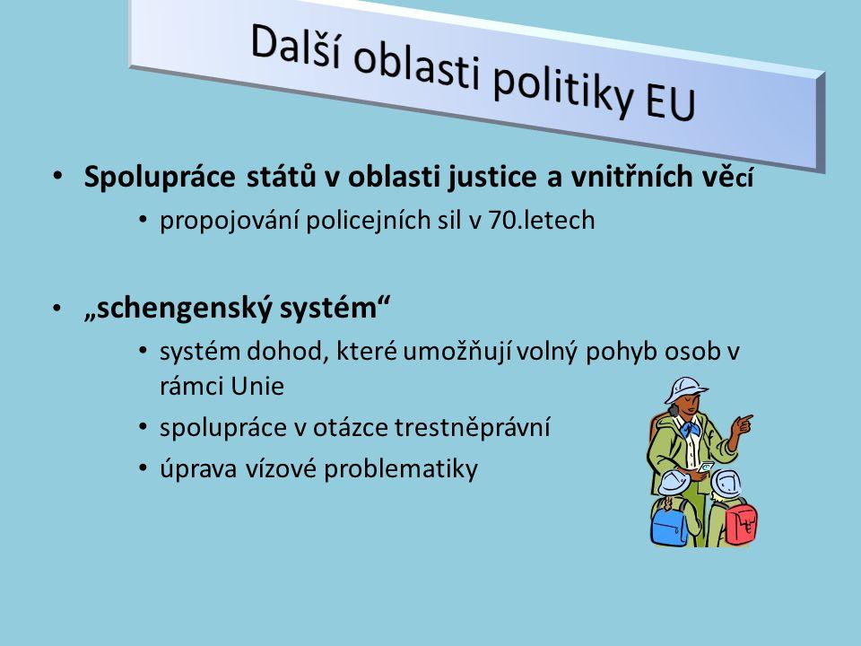 """Spolupráce států v oblasti justice a vnitřních vě cí propojování policejních sil v 70.letech """" schengenský systém systém dohod, které umožňují volný pohyb osob v rámci Unie spolupráce v otázce trestněprávní úprava vízové problematiky"""