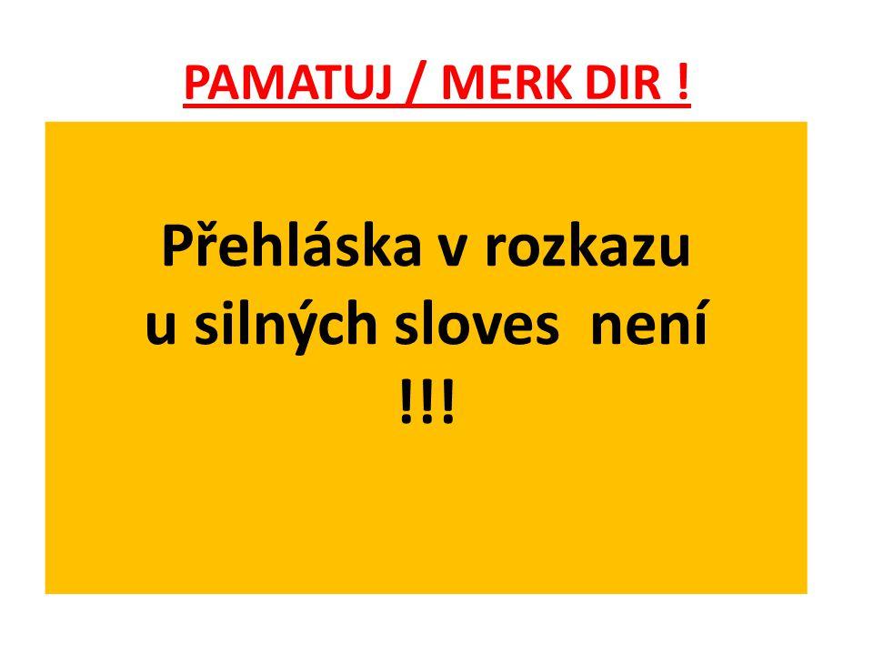 PAMATUJ / MERK DIR ! Přehláska v rozkazu u silných sloves není !!!